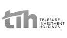 Telesure Investment Holdings